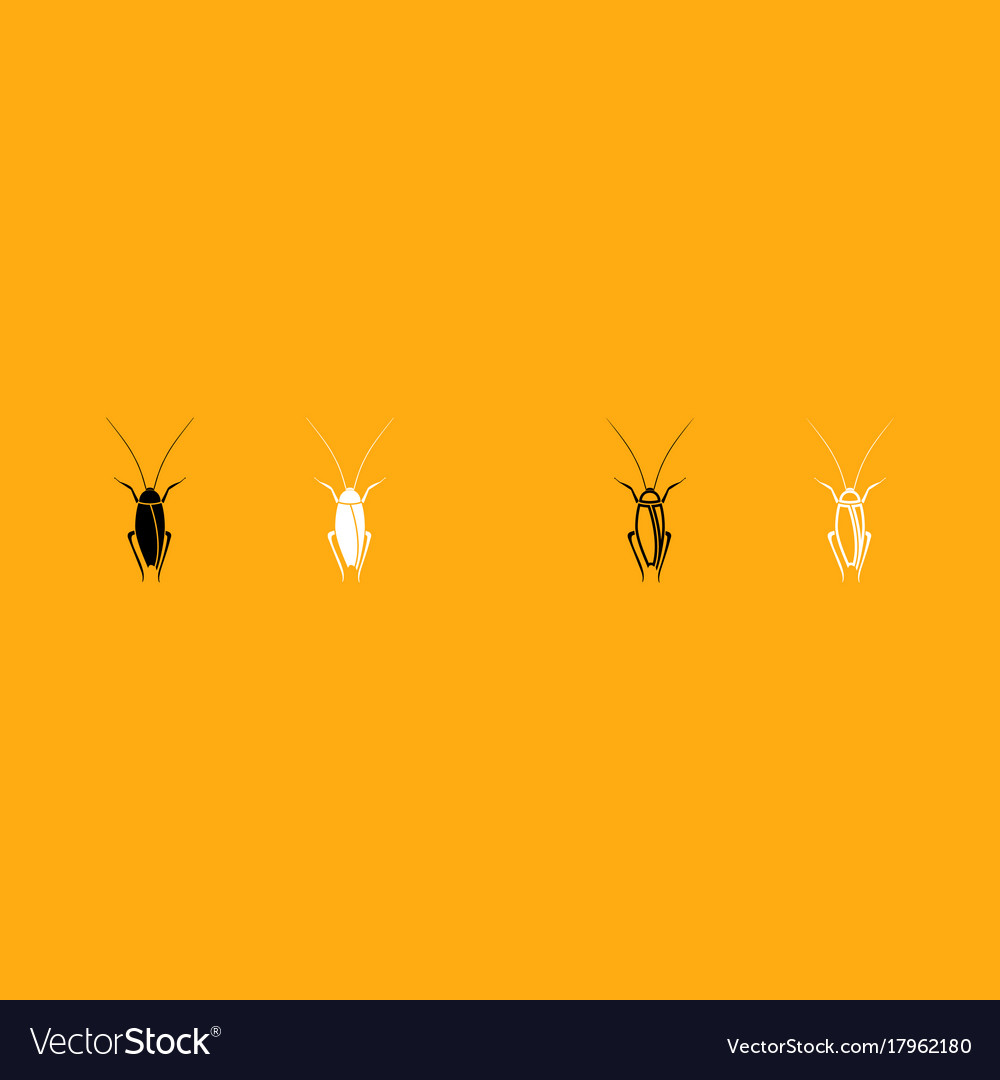 Cockroach it is white icon