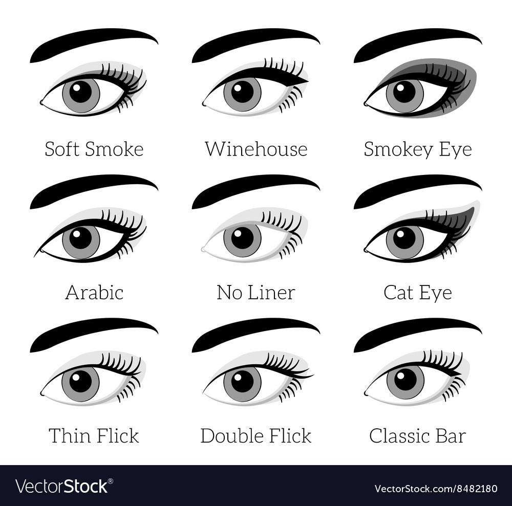 Eye Makeup Types Infographic Royalty