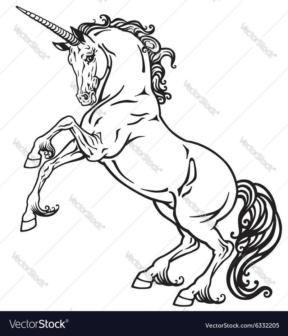 Unicorn black white vector image