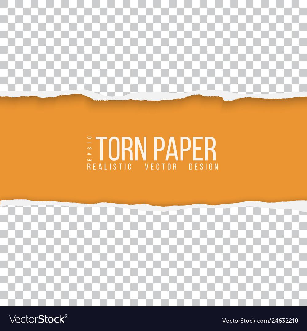 Realistic torn paper border