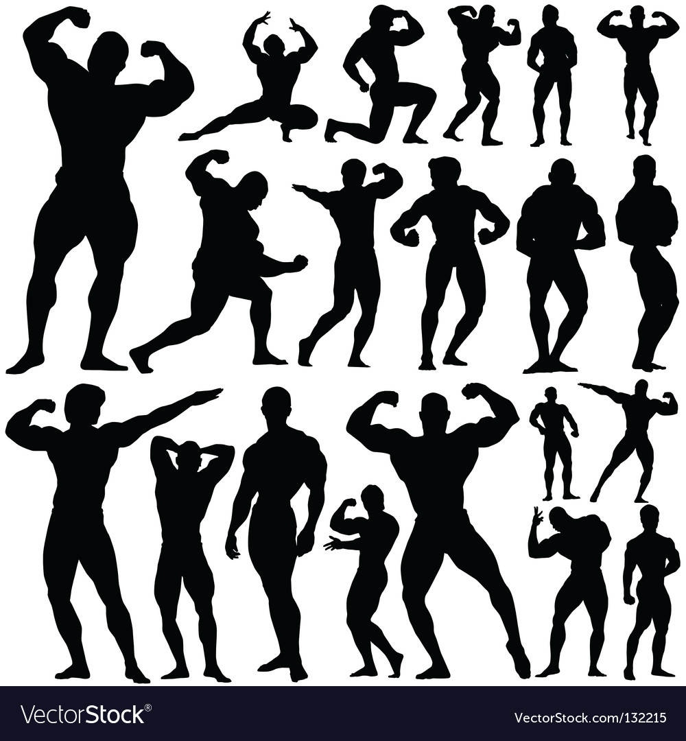 Gym fitness vector image