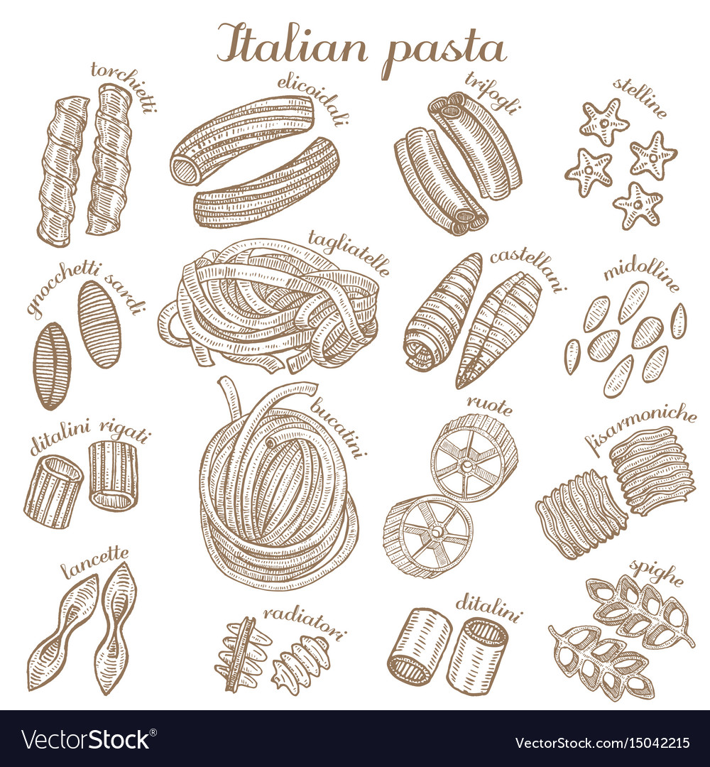 Set of different pasta shapes
