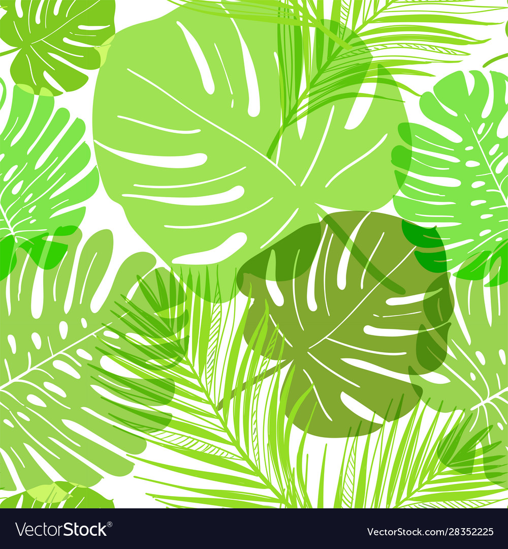 Pattern green tropical leaves summer transparent