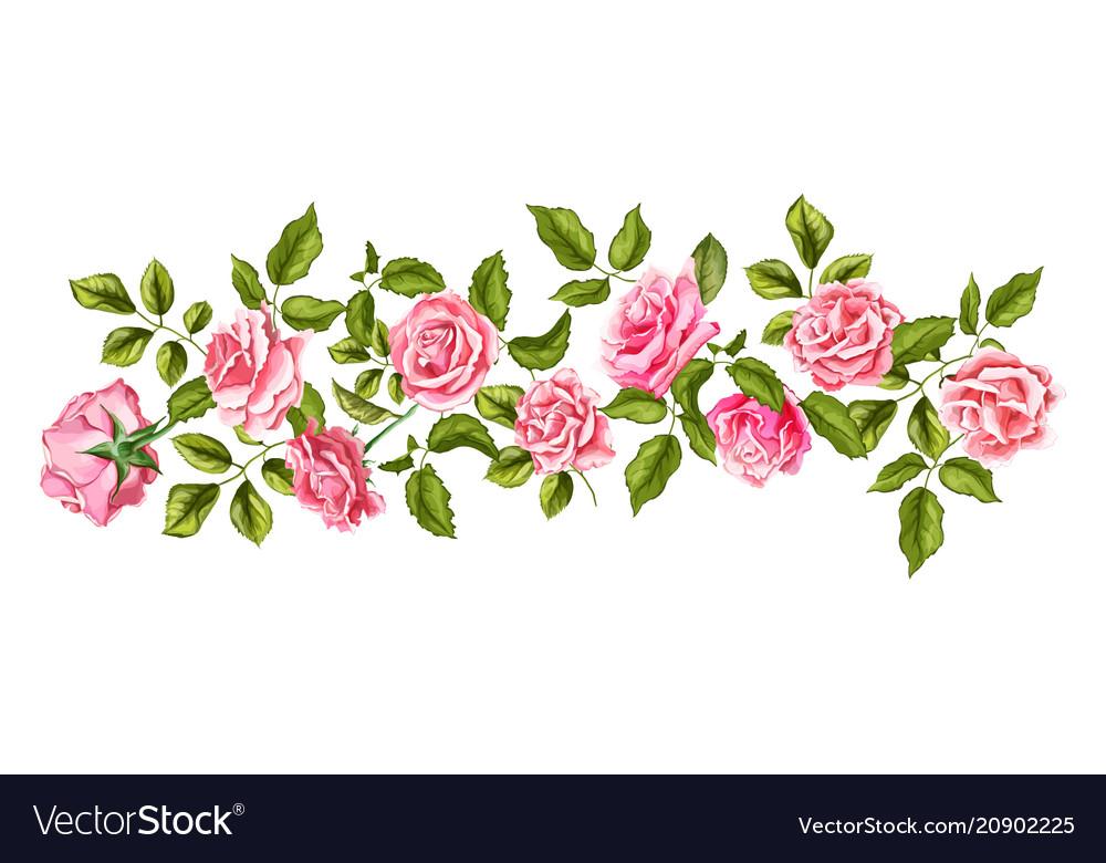 Rose flower blossom leaf pattern