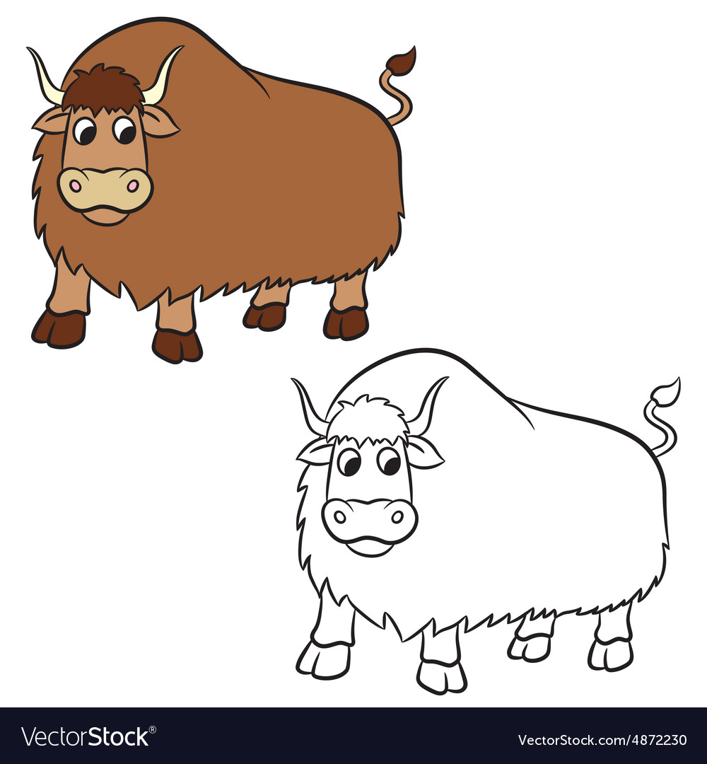 Yak for Coloring book vector image
