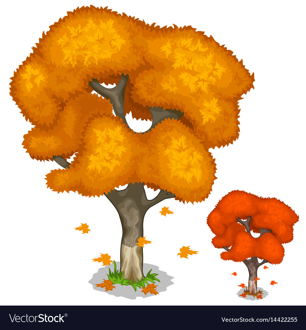 Autumn maple tree with falling leaves isolated
