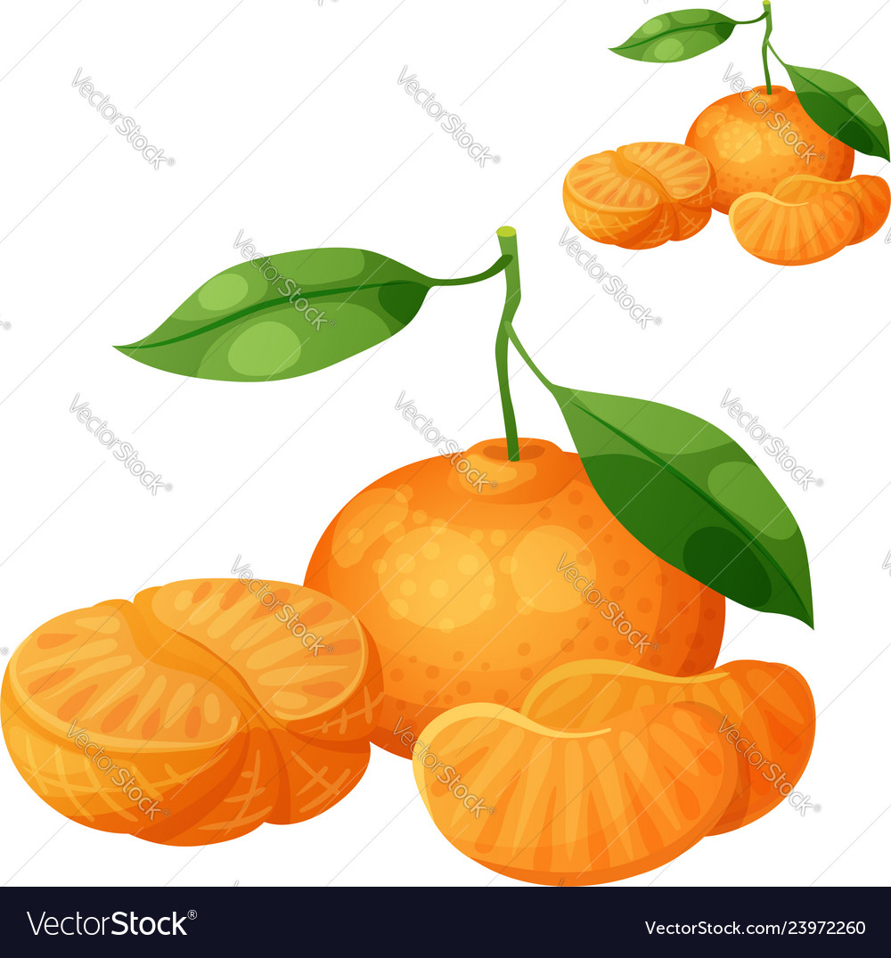 Pictures Of A Tangerine