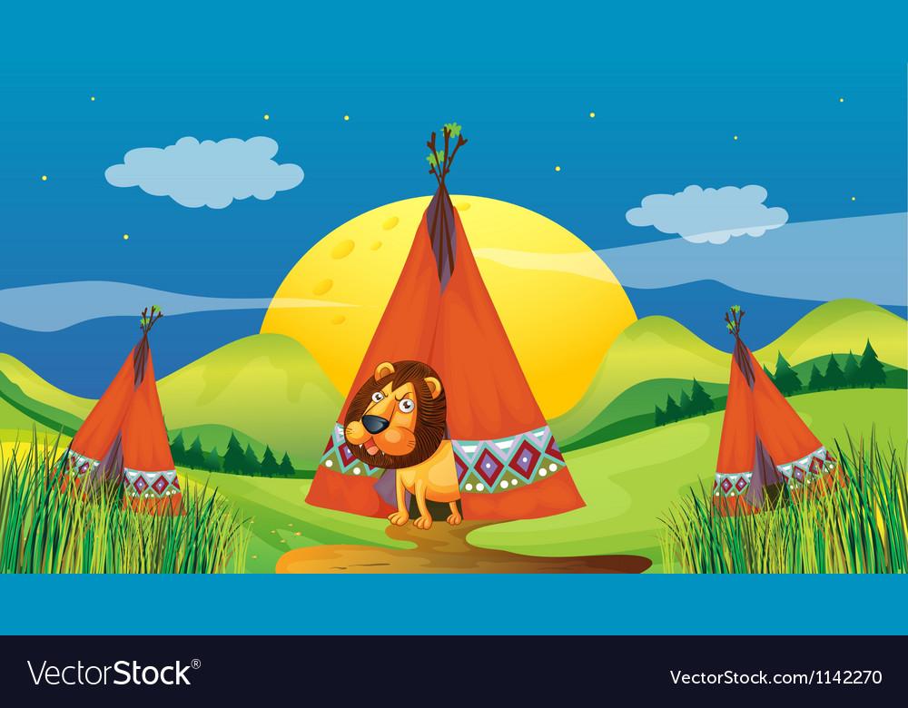 A lion inside a tent