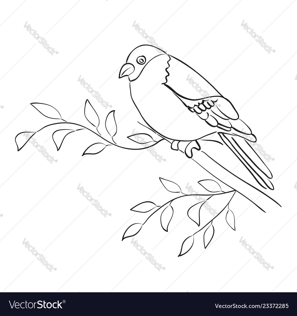Silhouette Bird Sit On Branch Sparrow Royalty Free Vector