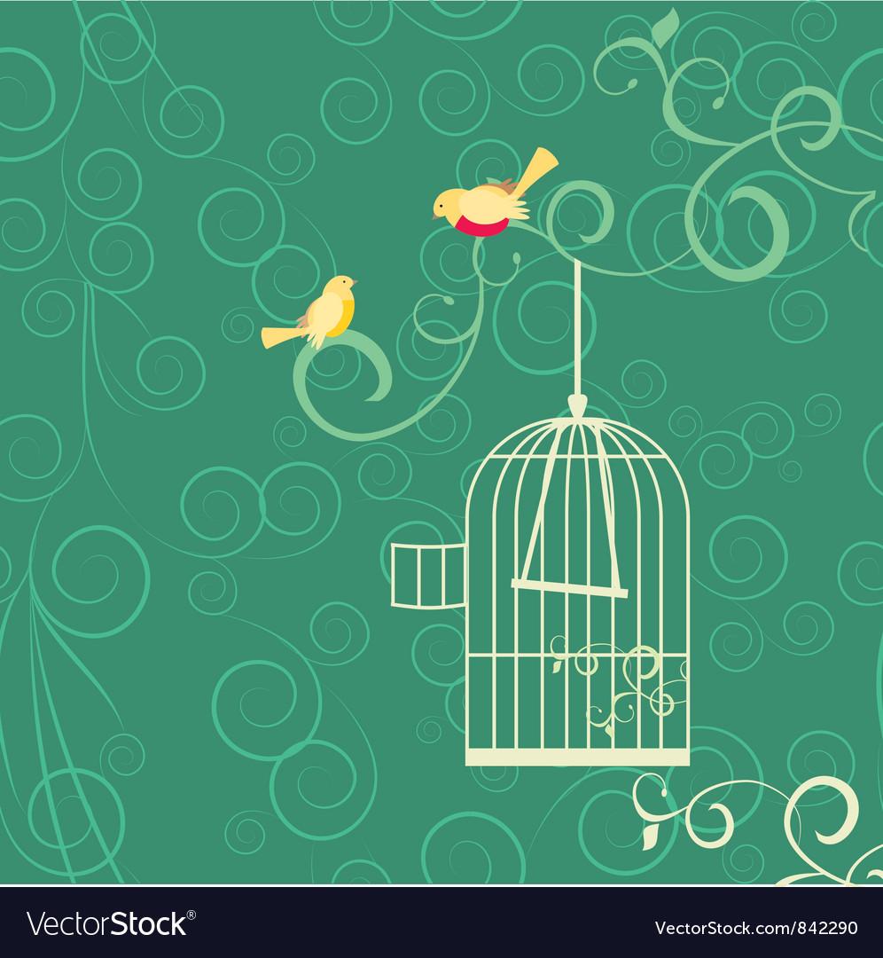 Birds cage vector image