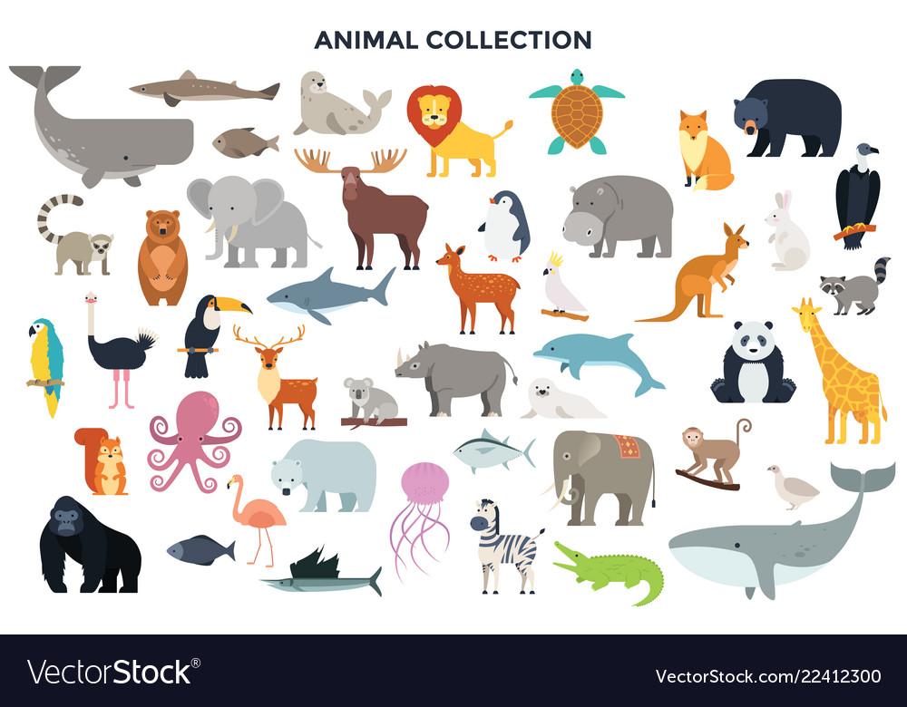 Big collection of wild animals