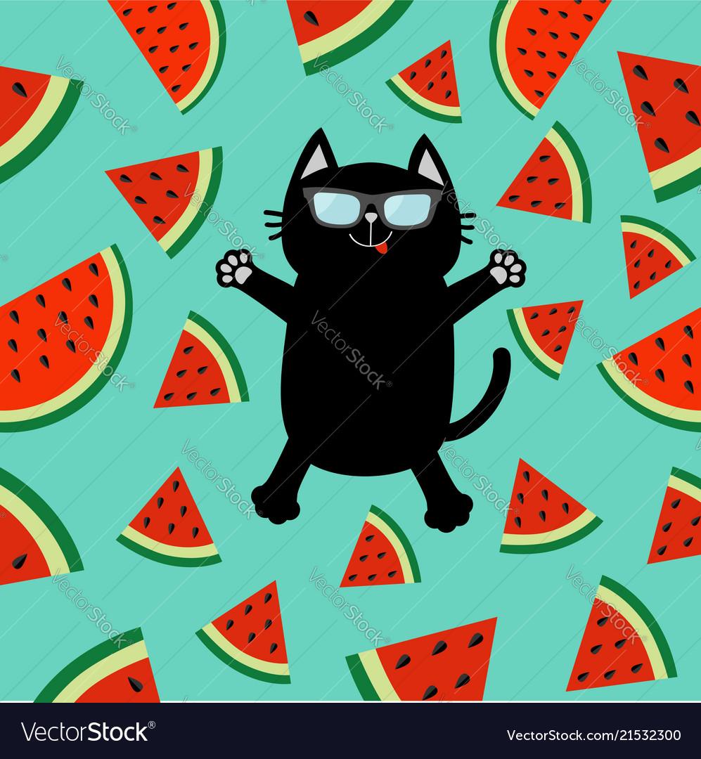 Black cat wearing sunglasses jumping or making