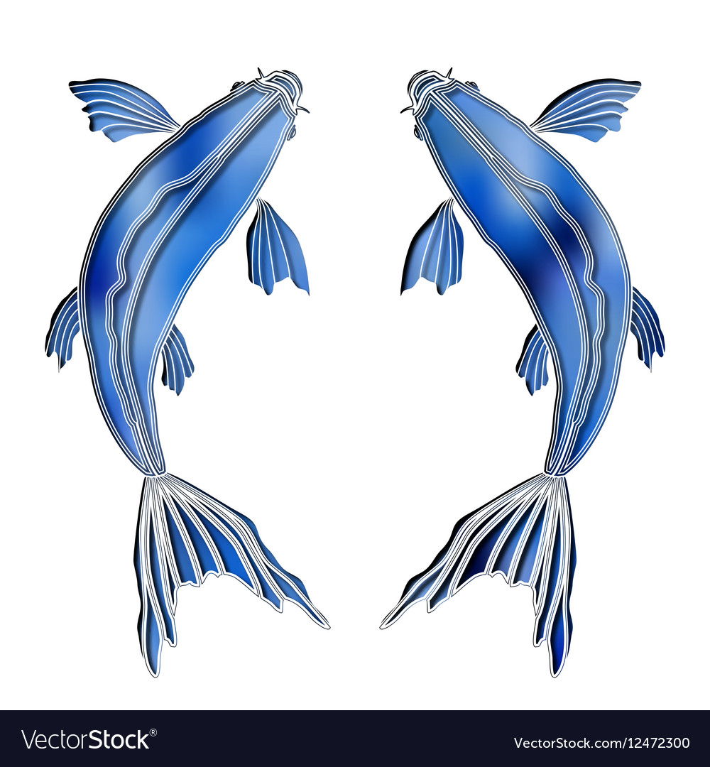 Bright fishes zodiac Pisces sign vector image