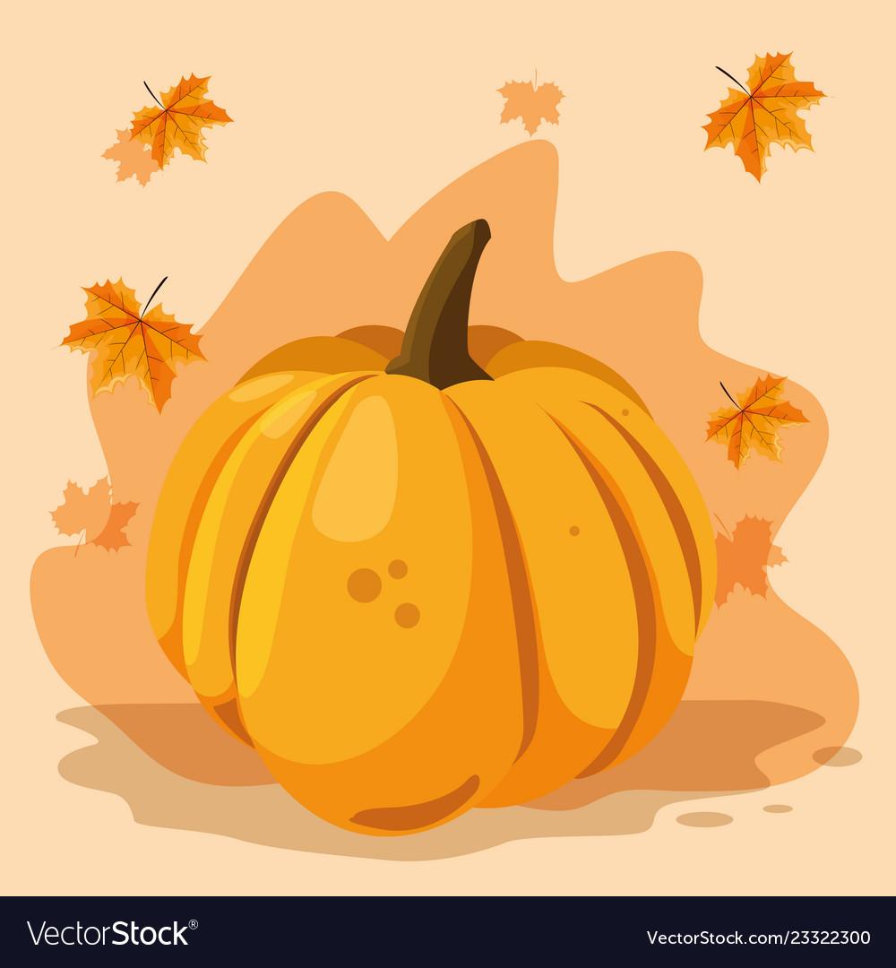 Pumpkin vegetable design