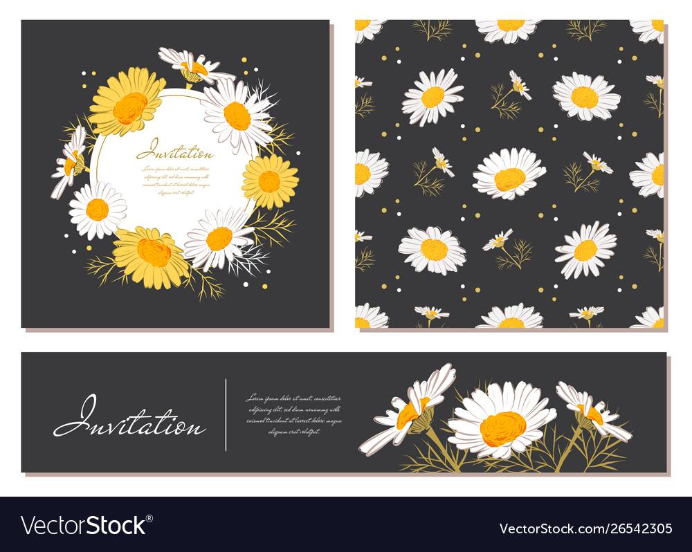 Flowers cards set chamomile background daisy
