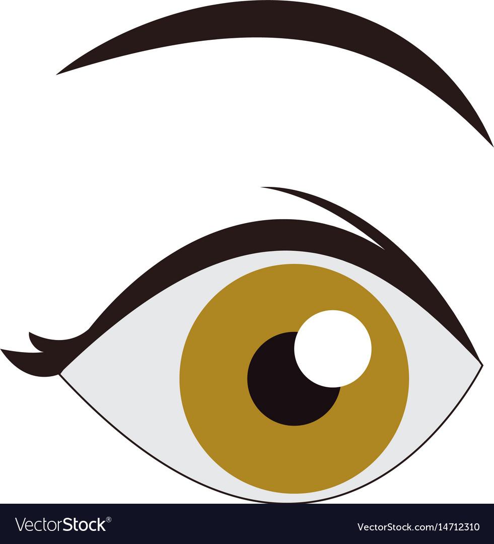 Cartoon eye look eyebrow human image