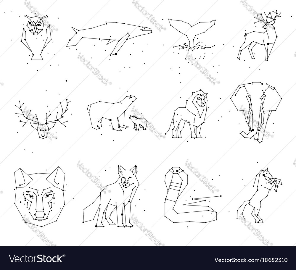 Collection animals constellation on white