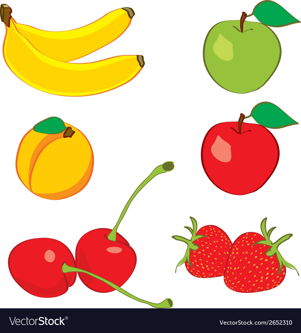 Colorful fruits in hand drawn sketch