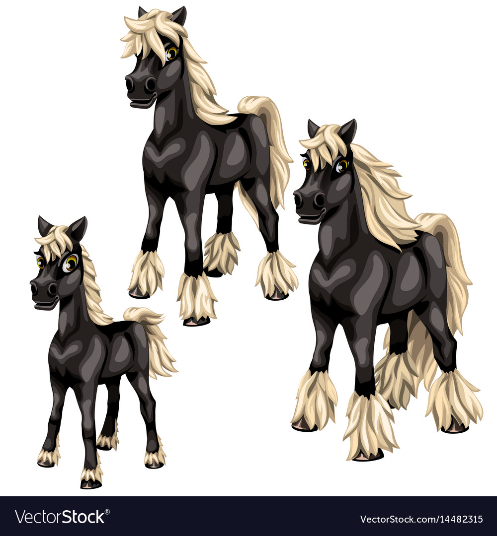 Cartoon black horses with blonde mane vector image
