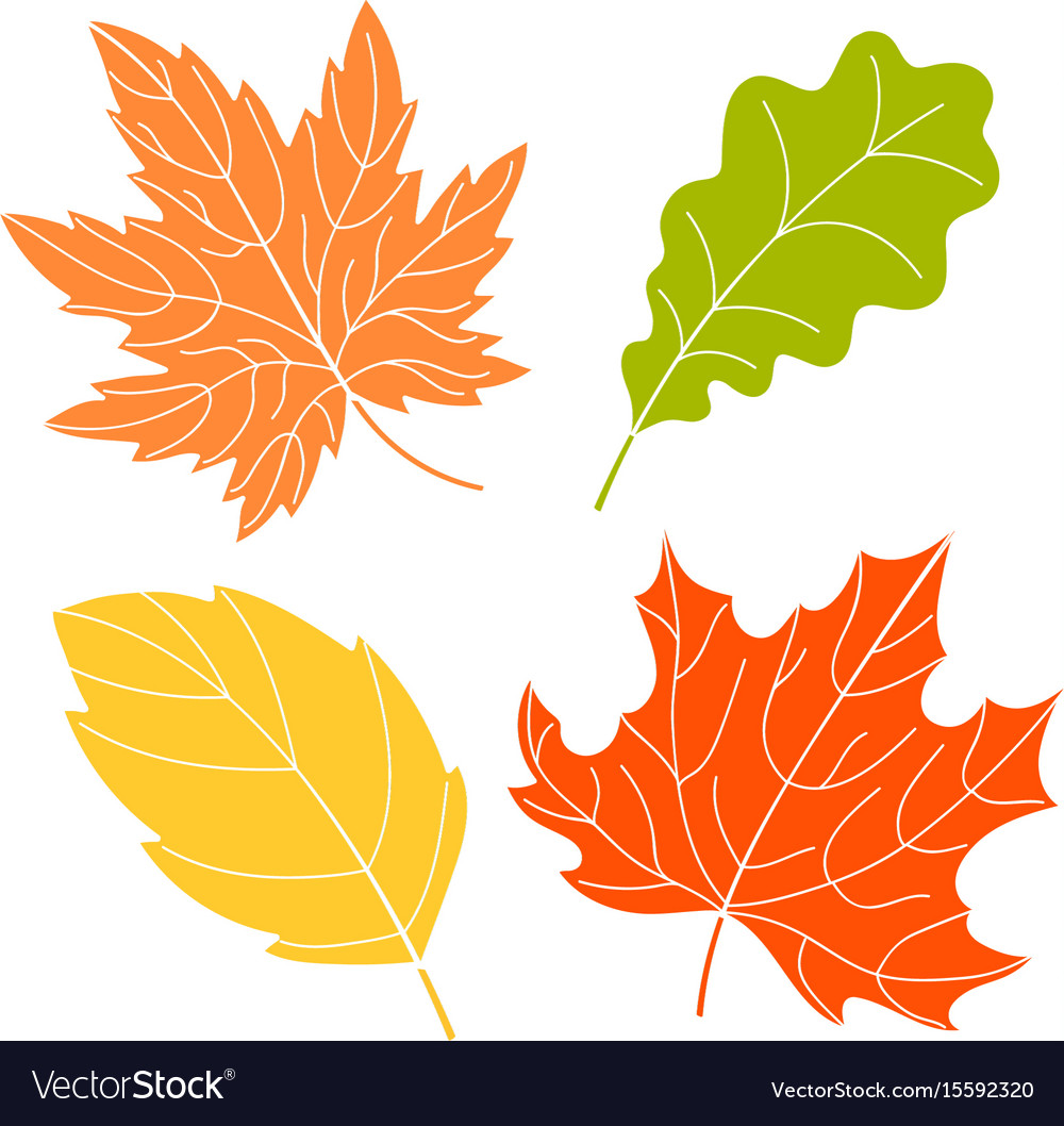 Four color leaves