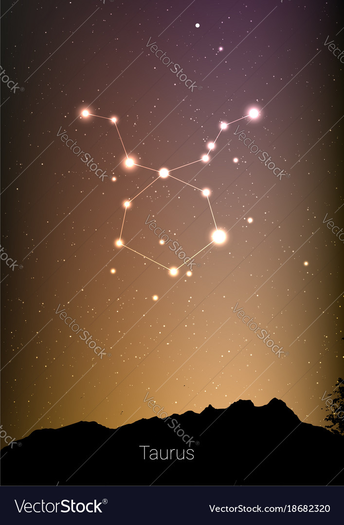 Taurus zodiac constellations sign with forest vector image