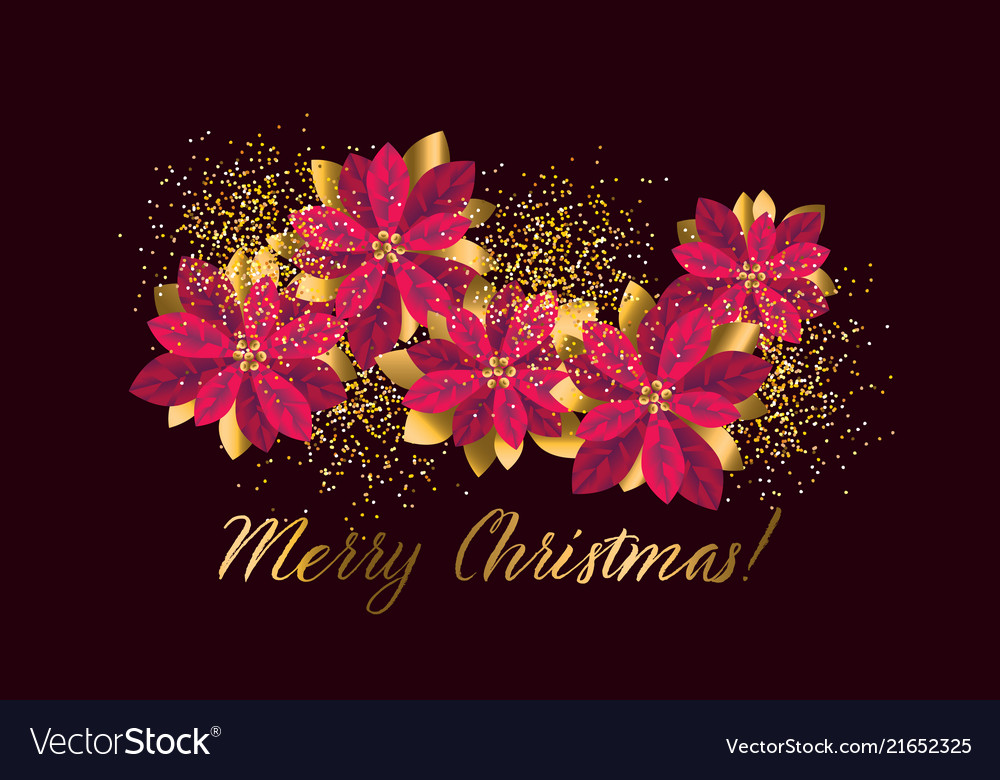 Christmas red and gold poinsettia design element