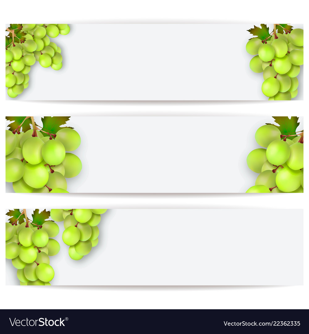 Cards or labels with realistic grapes