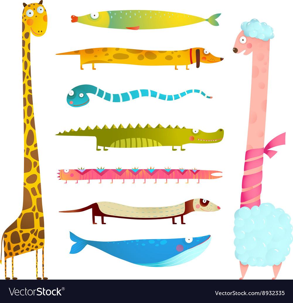 Fun Cartoon Long Animals Collection