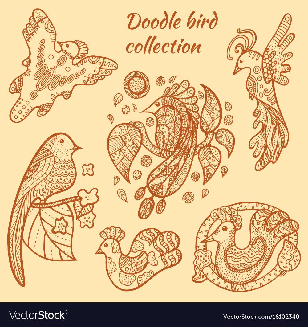 Hand drawn bird collection