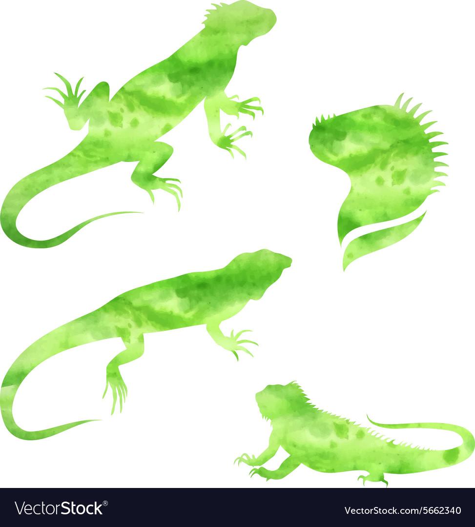 Lizard iguana watercolor set