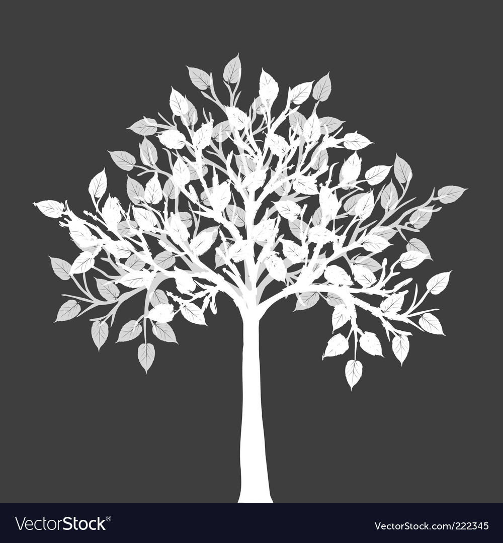 White tree silhouette vector image