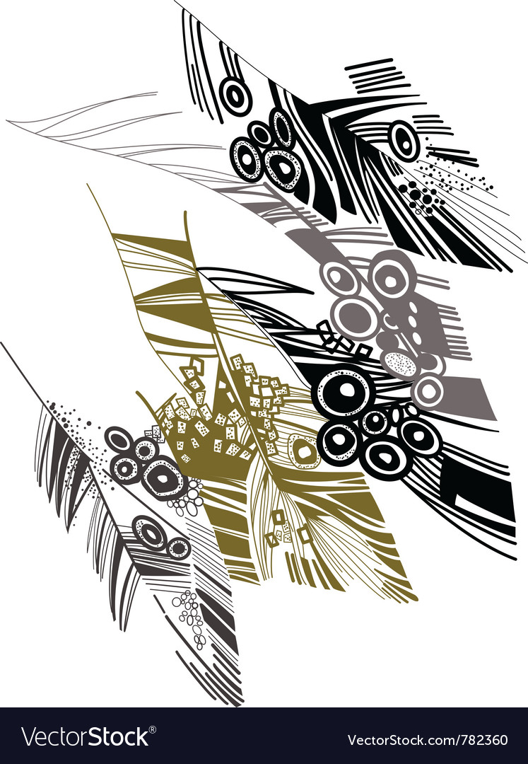 Birds feather graphic color sketch