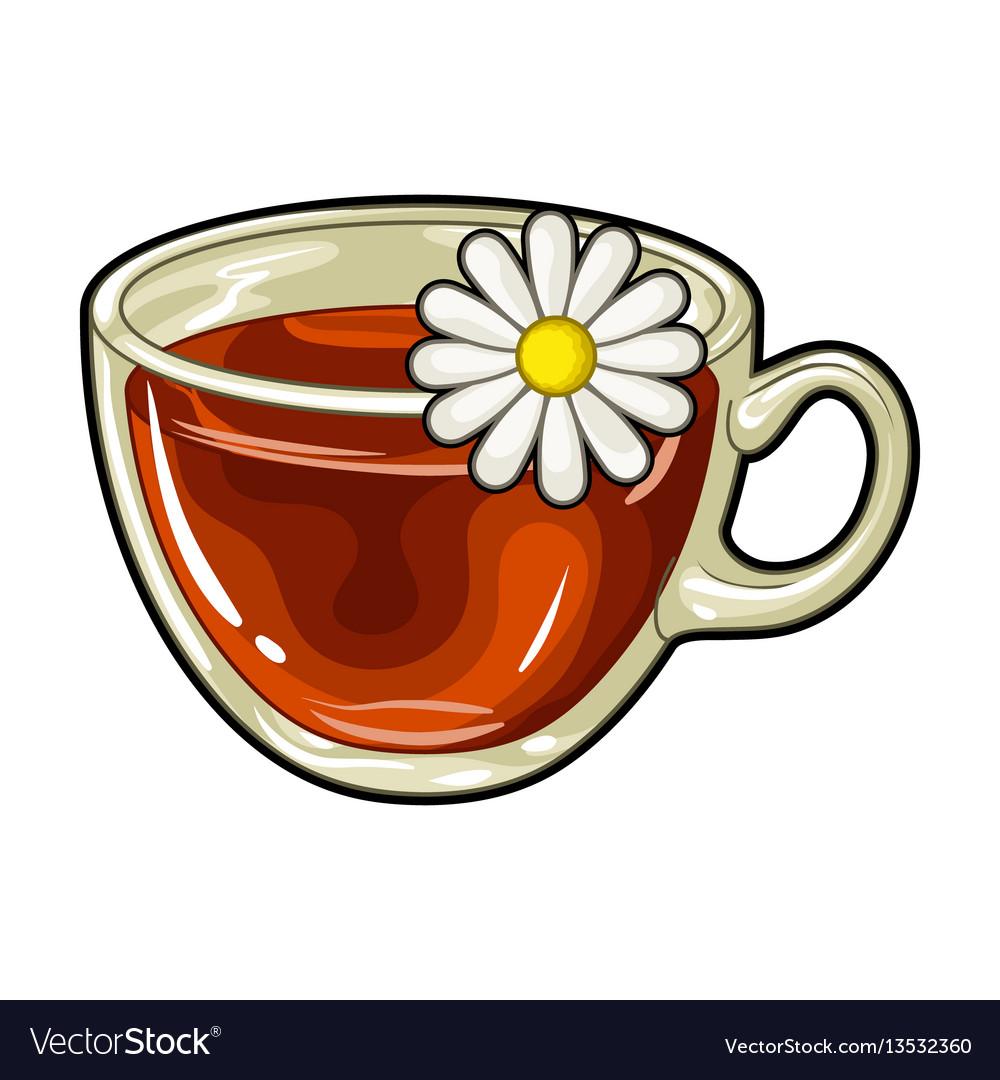 Glass mug with tea usefulvegetarian therapeutic