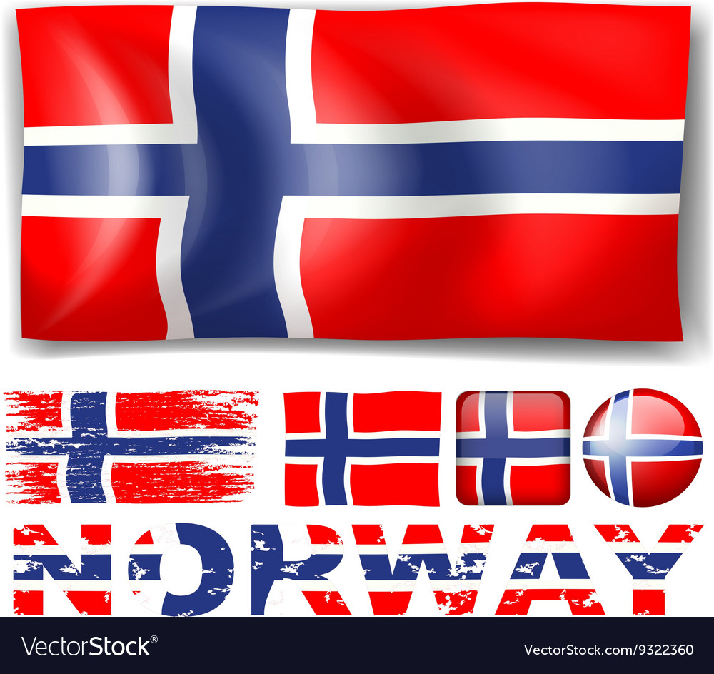 Norway flag in different designs vector image
