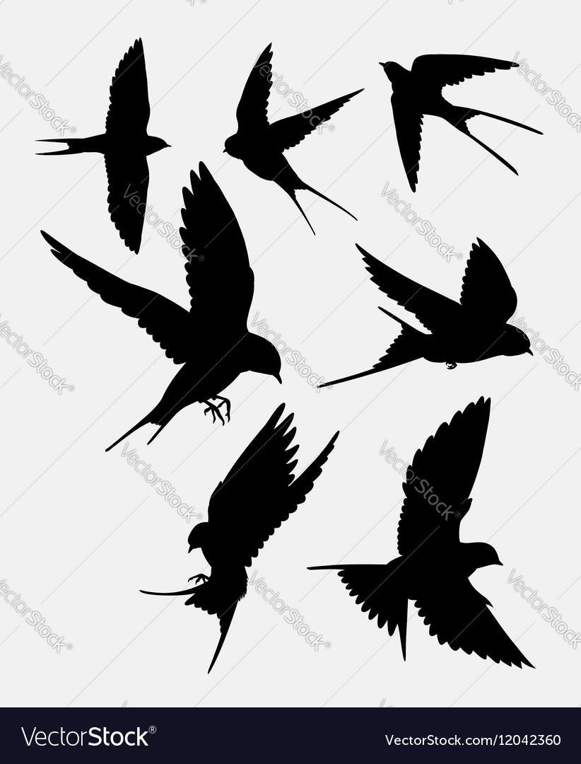 Swallow bird animal silhouette vector image