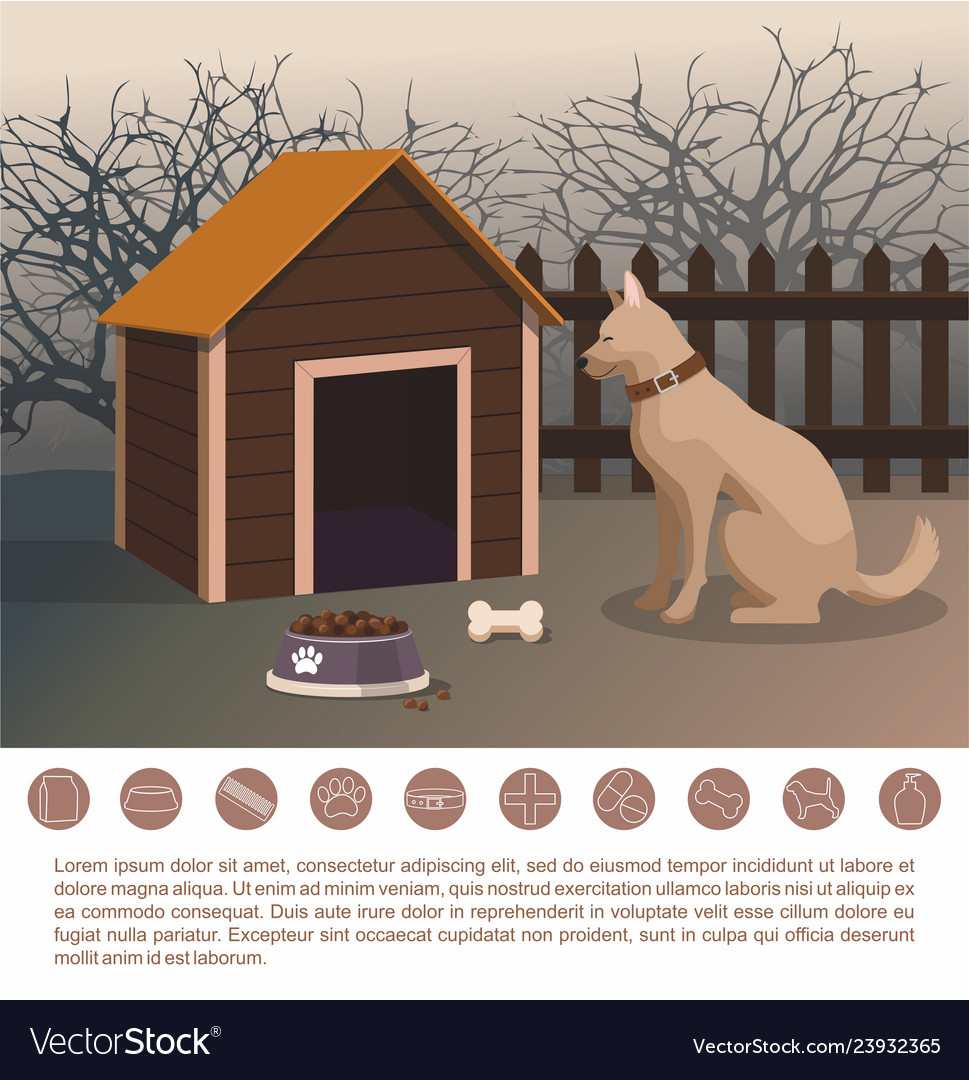 dog sitting next to the kennel pets accessories vector image