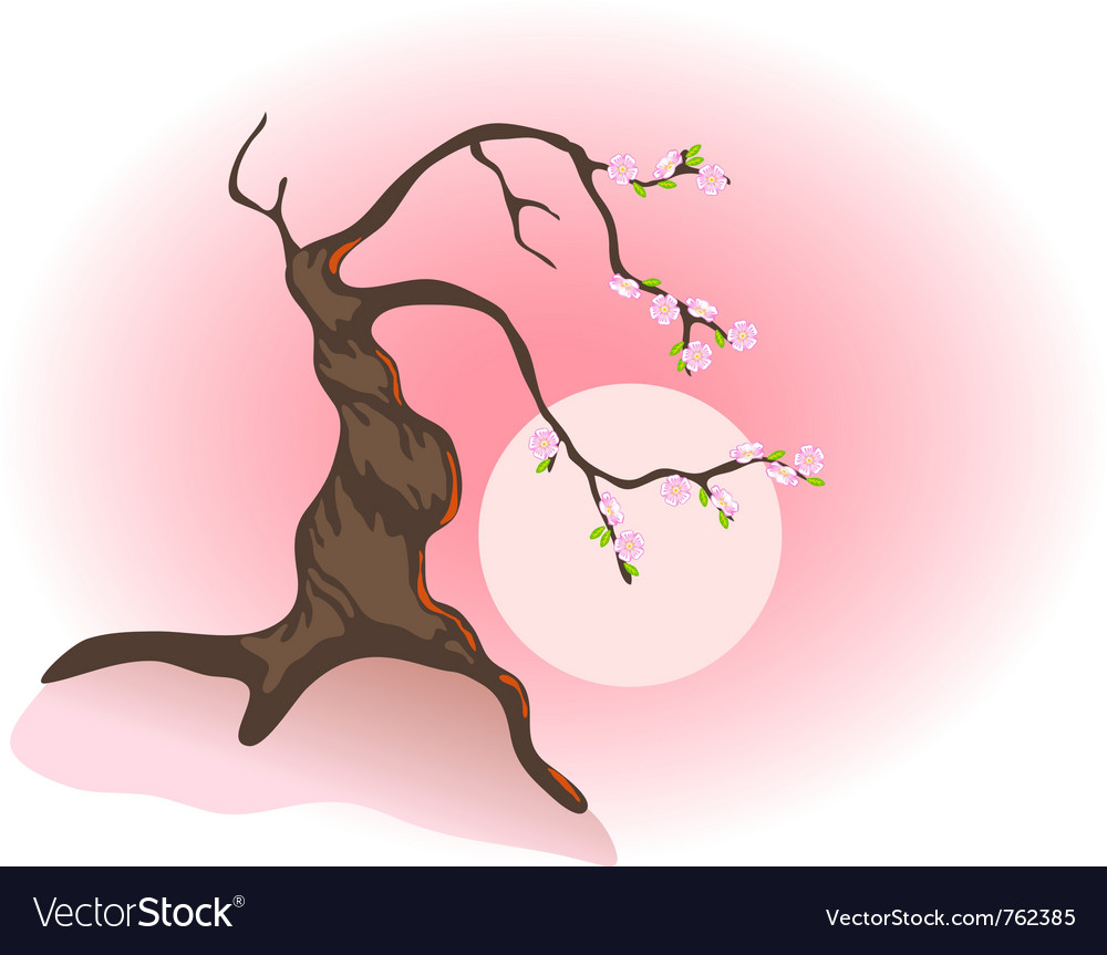 Flowering bonsai vector image