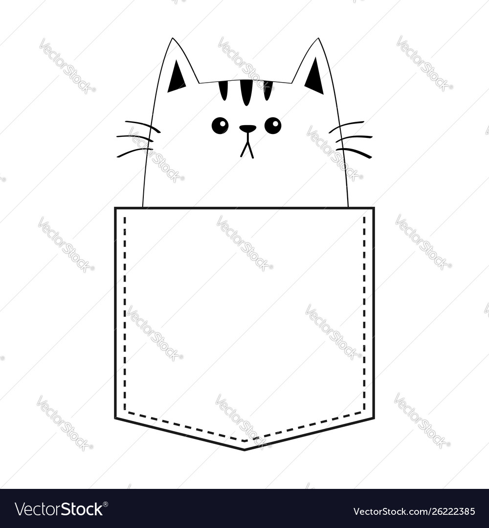 Kitten cat in pocket doodle contour linear