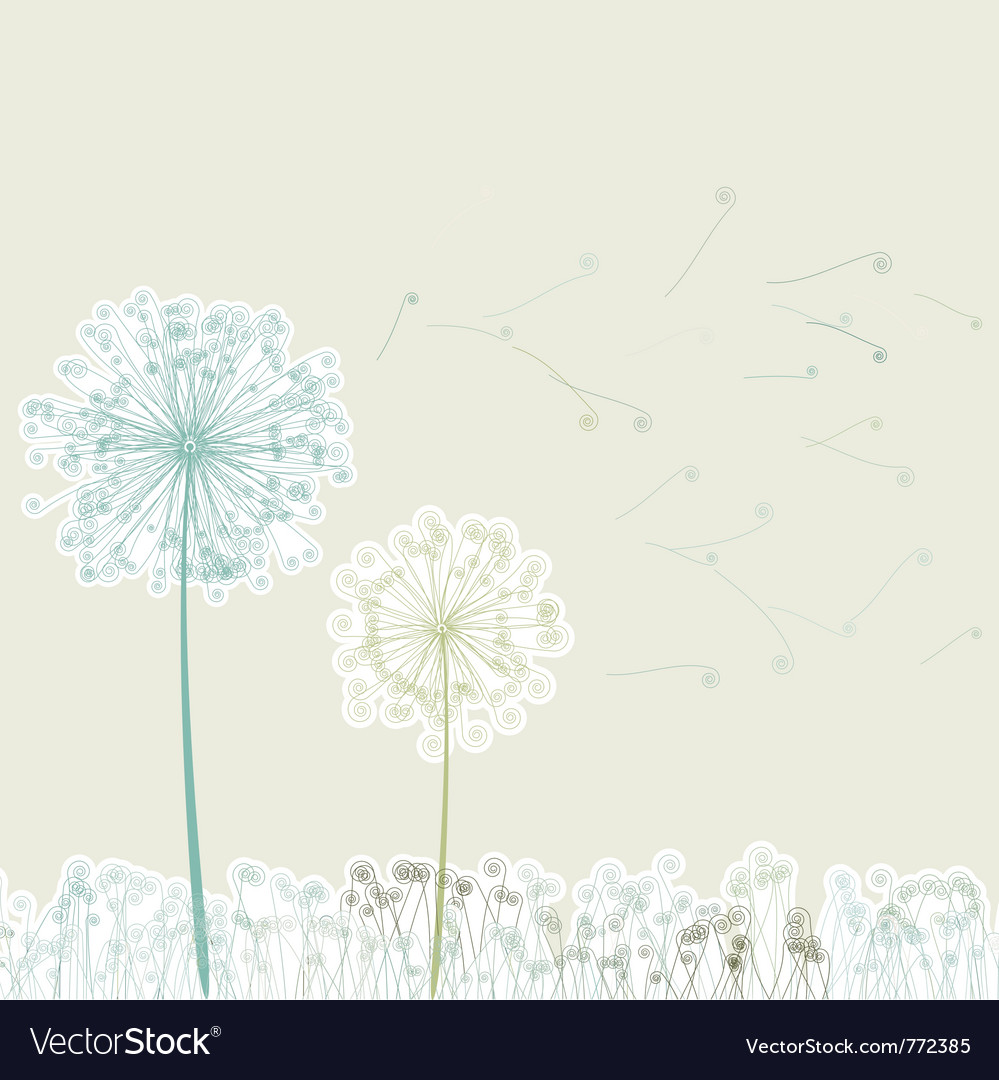 Vintage two dandelions vector image