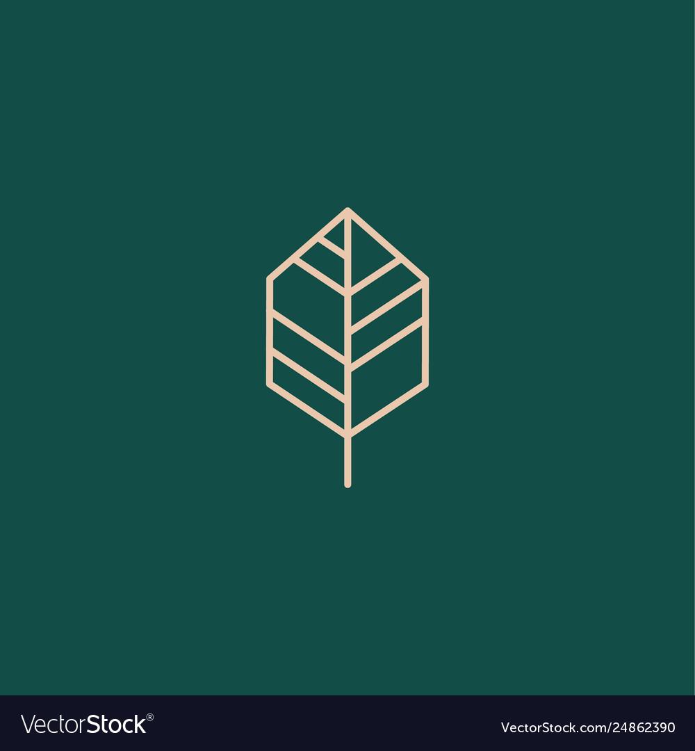 Leaf line minimalist icon