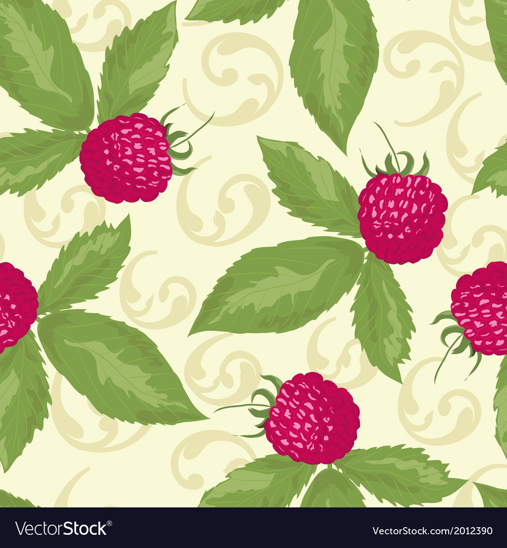 Raspberry seamless pattern with raspberry