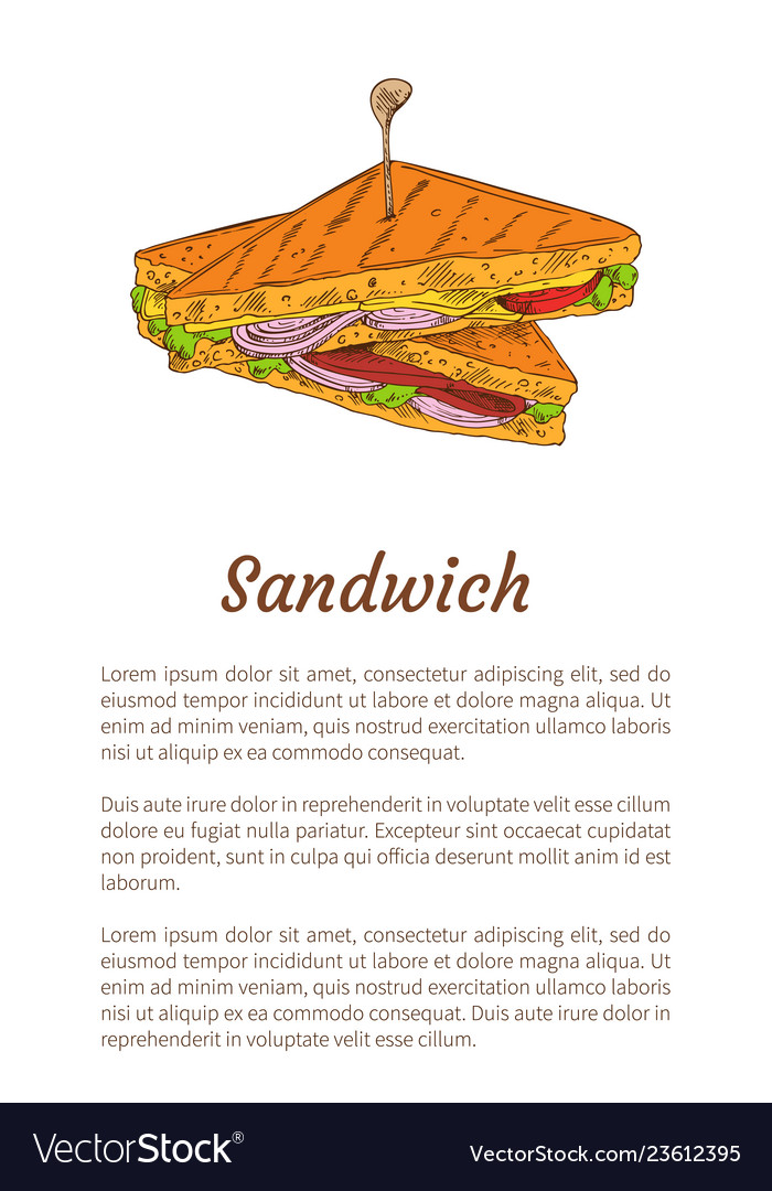 Sandwich snack isolated color