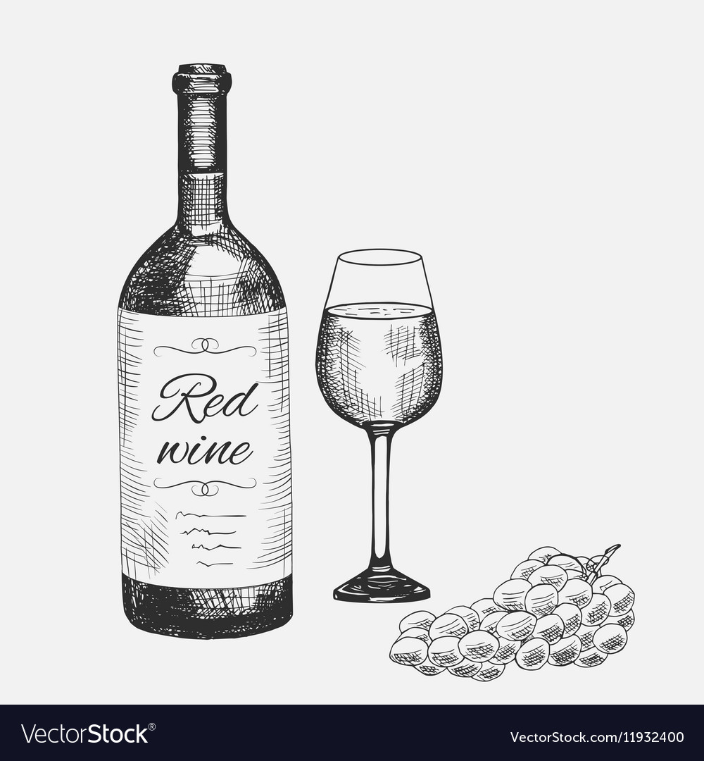 Hand drawn set of red wine elements