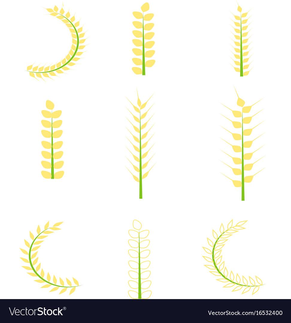 Rice icons set