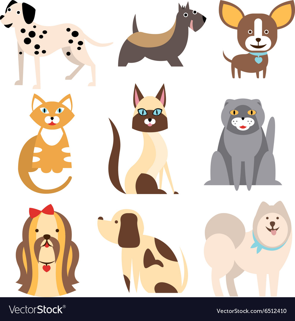 Collection of Cats and Dogs Different Breeds