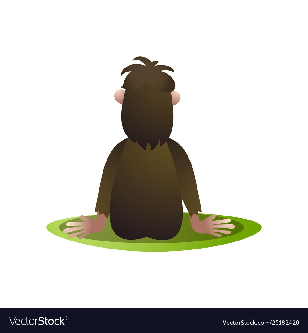 Bigfoot Yeti Stay And Saw At Horizont Back View