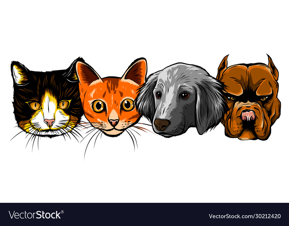 Cat and dog characters cartoon styled