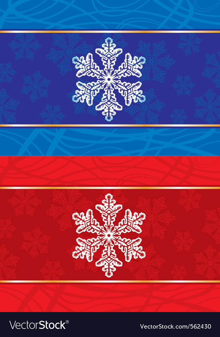 Abstract christmas postcard with snowflakes vector image