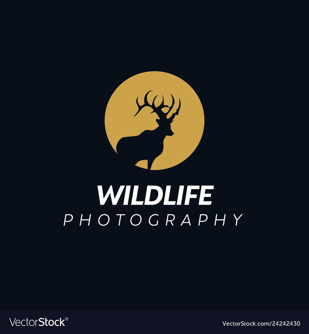 Deer logo design inspiration