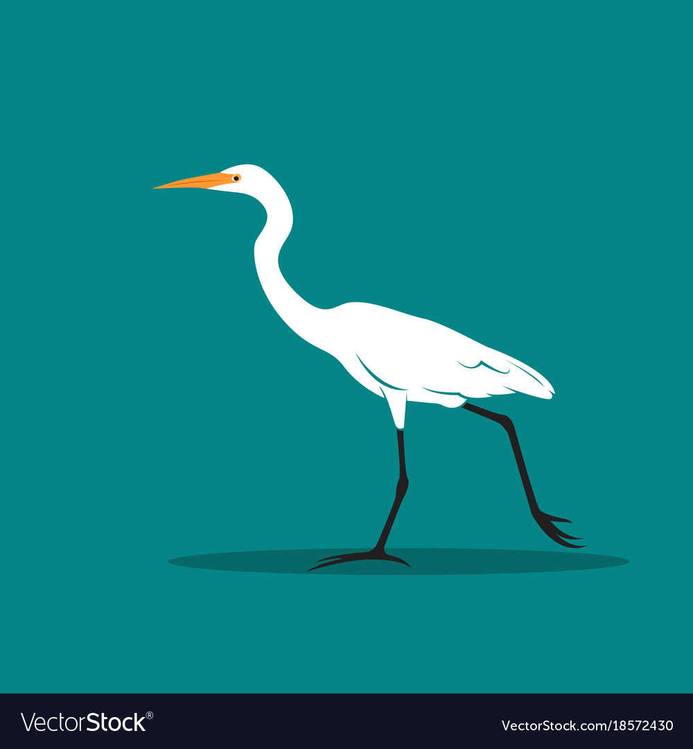 Heron or egret design ciconiiformes ardeidae on